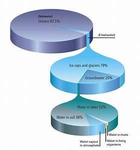 Water Distribution On This Planet  U2013 Earth  U00abnitin D Sharma