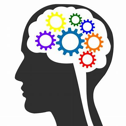 Clipart Brain Knowledge Gear Transparent Learning Study