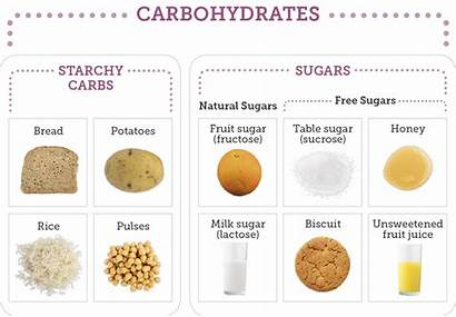 Carbohydrates Sugar Carbohydrate Types Starch Sources Main