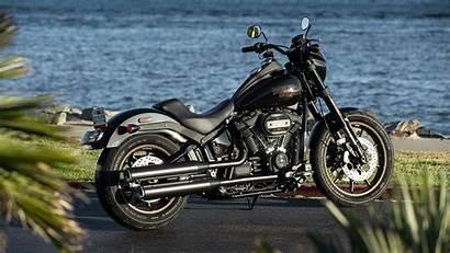 Rider Harley Low Davidson Bike Bikes Ride