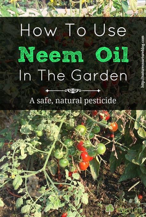 neem oil   garden