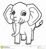 Elephant Coloring Cartoon Cute Illustration Vector Animal Baby Sketch Preview Flowers Holding African sketch template