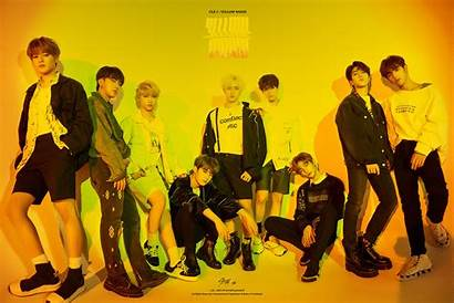 Stray Yellow Wood Concept Kpop Cle Comeback