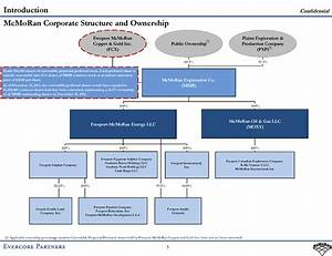 Company Organizational Chart Logo