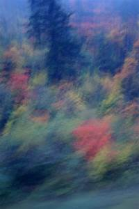 Winter Themed Backgrounds Free Stock Photo Of Abstract Natural Background