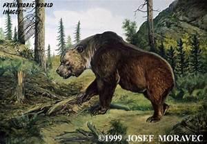 prehistoric animals |Zoo Animals
