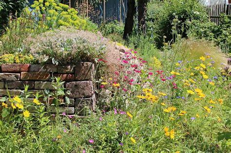 Garten Norden Pflanzen by Grundlagen Naturgarten Nabu