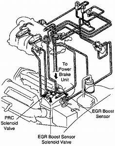 1996 Mazda 626 Free Manual Diagram Egr Valv