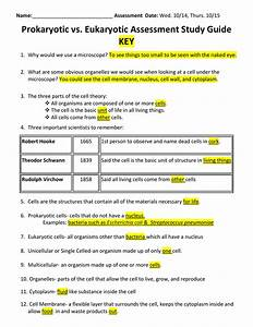 Prokaryotic Vs  Eukaryotic Assessment Study Guide Key