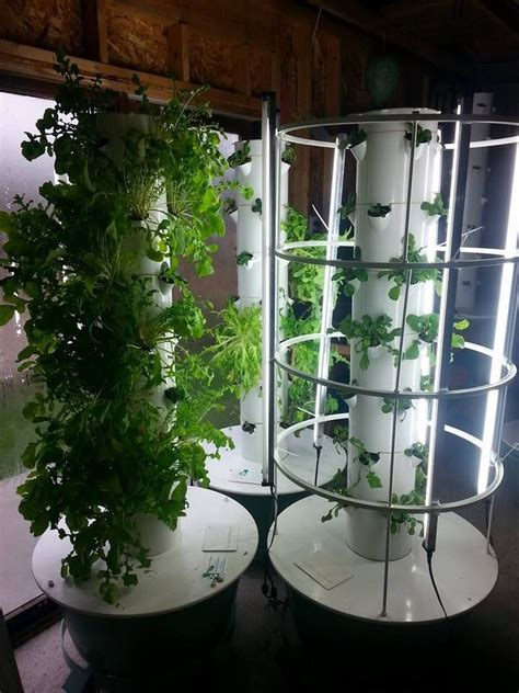 1000 images about tower garden on juice plus
