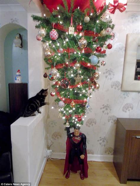 cardiff family hang christmas tree   ceiling
