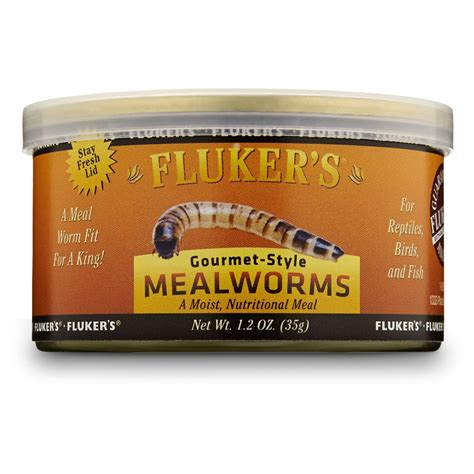 fluker s gourmet style mealworms reptile food petco