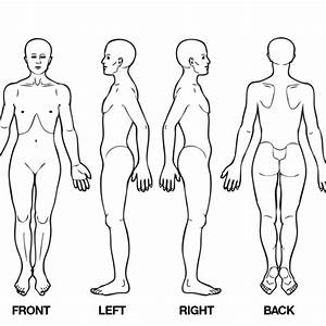 Body Diagram For Professional Massage Chart  Front  Back  Left And Right Views