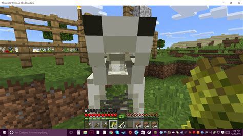 minecraft skeleton horses why did forums