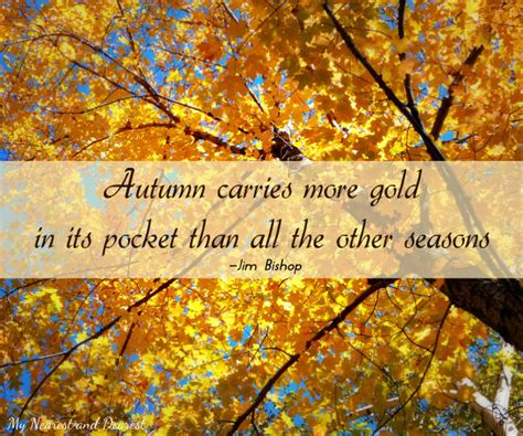 Autumn Foliage And Quotes Quotesgram