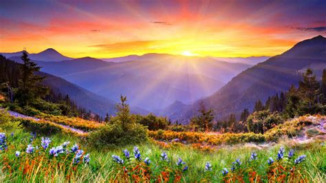 awesome sunset sun rays forested mountains beautiful