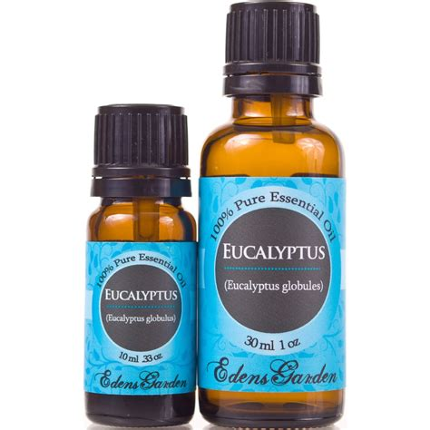 8 Uses Of Eucalyptus Oil