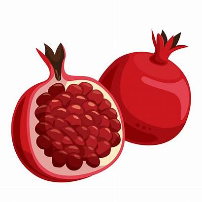 Pomegranate Clipart Fruit Clip Fruits Cliparts Clipartkey