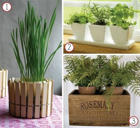 herb garden planter ideas memes