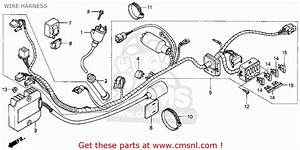 Honda Xr650l 1998  W  Usa Wire Harness