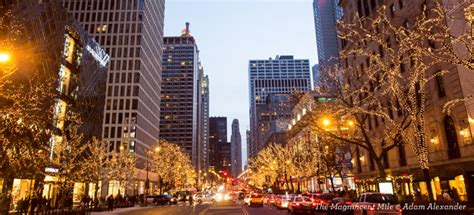 christmas lights  chicago holiday tours choose chicago