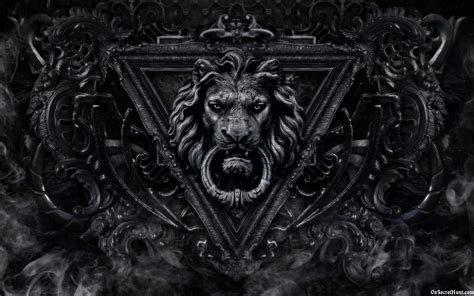 lion black  white wallpapers widescreen earthly