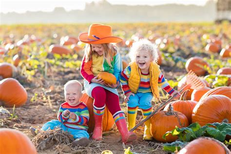 Colorado Pumpkin Patches 2017 by Pumpkin Patches In And Around Denver 2017 The Denver Ear