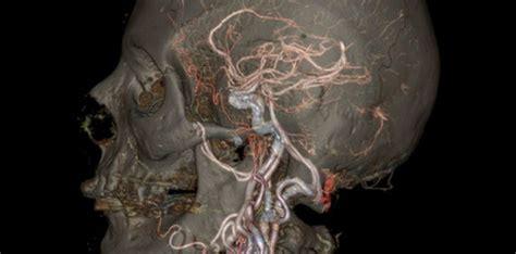 en images le corps humain comme vous ne l avez jamais vu sciencesetavenir fr