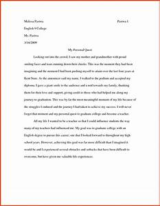 essays examples moa format