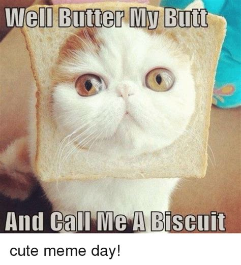 Butt Memes - 25 best memes about butter my butt and call me a biscuit