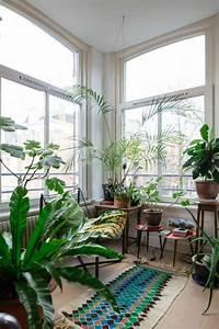 Pflanzen In Der Wohnung : inspirierende dekoideen kleiner innen gartenbereich gartenprodukte indoor garten und innengarten ~ A.2002-acura-tl-radio.info Haus und Dekorationen