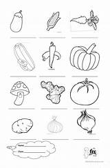 Vegetables Vegetable Coloring Worksheets Worksheet Preschoolers Printables Esl Activities Preschool Printable Fruit Pages Kindergarten English Number Worksheeto Learning Via Upvote sketch template