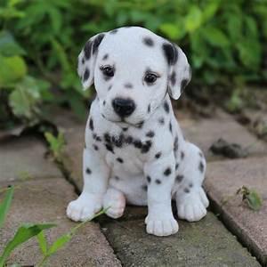 Hi-Line Gift Ltd. Dalmatian Puppy Statue & Reviews | Wayfair