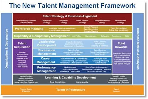 talent management framework  detail management