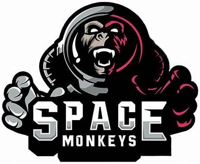 Space Monkeys Pubg Team Liquipedia Wiki