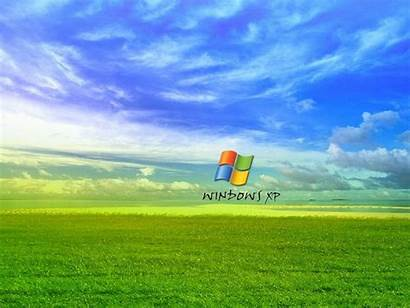 Xp Windows Grass Wallpapers Backgrounds Tag