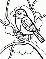 Coloring Bird Pages Crow Birds Colouring Printable Sheets Adults Cardinal Pattern sketch template