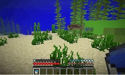Minecraft Moby Snapshot Ryba Nowe Zmiany Oraz