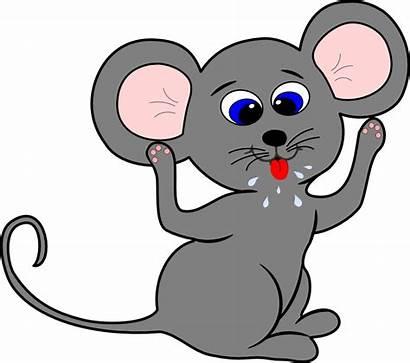 Mouse Cartoon Rat Clipart Transparent Face Background