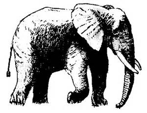 African Elephant Clip Art Free