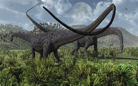 Diplodocus Dinosaurs Feeding By Maspix On Deviantart