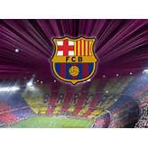 barcelona fc: barcelona fc