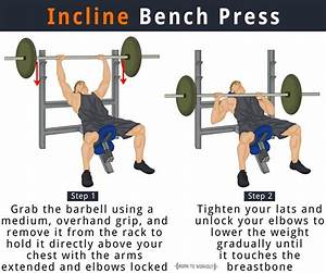 34 Bench Press Muscles Used Diagram