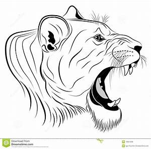 Lioness, tattoo stock vector. Illustration of carnivore ...
