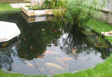 faire un bassin dans jardin ref 233 rence travaux