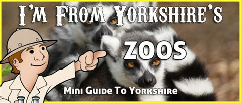 yorkshire zoos many displaying aquatic creatures birds animals there
