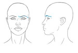 How to Draw a Realistic Face Shape