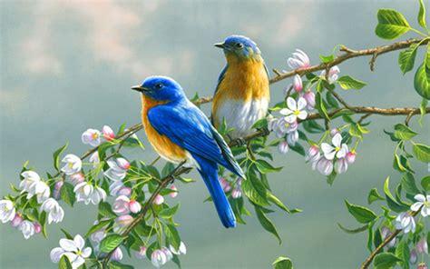 Art Painting Birds Flower Animal Wallpaper 1920x1200