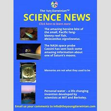 The Young Darwinian Student Journal Magazine  The Young Darwinian