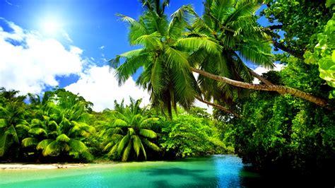 Summer Desktop Backgrounds Hd Tropical Nature 4k Wallpaper Free 4k Wallpaper